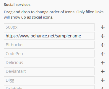 Social icons in customizer